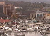 Streaming and controllable webcam. Views of Hobart waterfront, Victoria Dock, Tasman Bridge, Mount Wellington and Derwent River.