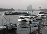 Live webcam view from the banks of the Rhine.