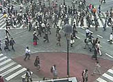 Live street cams - Shinjuku-dori and Shinjuku Station east exit.