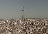 View from Tokyo Times Tower toward Tokyo Sky Tree, Sumida.