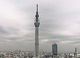 Streaming cam looking straight up the Tokyo SkyTree under construction. Uses Java.