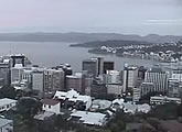 Live 180 degree view of the Wellington skyline and harbour.