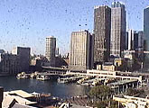 View of Sydney CBD and Circular Quay.