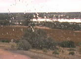 Winery cam along the Murray River in South Australia.